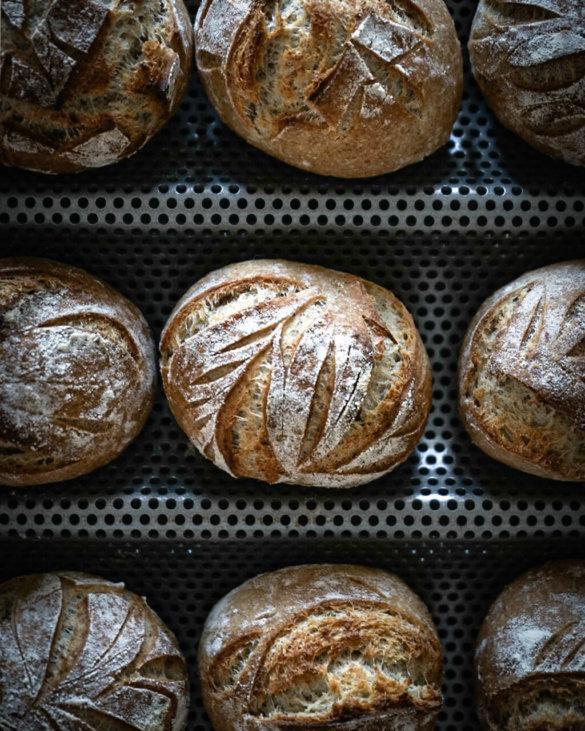 Scoring sourdough crash course with bread rolls